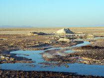 Concrétions salines à la Laguna Chaxa