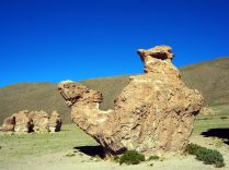 Rocher en forme de chameau