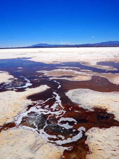 Résurgences d'eau dans le salar d'Uyuni