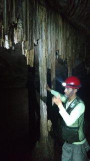 Notre guide nous expliquant la formation des stalagtites/stalagmites. Sur la gauche de l'image, on distingue des stalagtites cassées par des visiteurs peu srcupuleux, avant que la zone soit classée en Parc National
