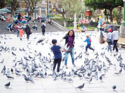 Une mère et son enfant donnant à manger à des pigeons, La Paz