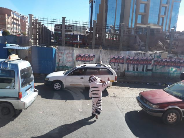 Des agents de la circulation déguisés en zèbres (en référence aux passages piétons ?) tentent de réguler la circulation, à La Paz