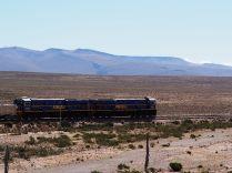 Un train de perurail traverse longe la route menant au Canyon de colqua