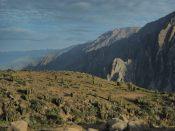 Mirador des condors, canyon de colca