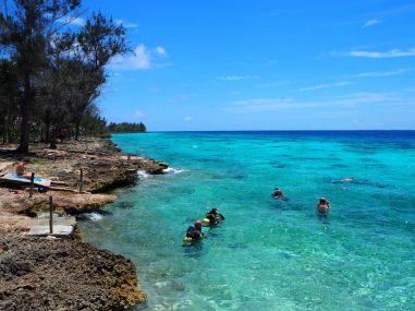 Plongée / Snorkling à Playa Larga