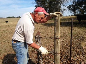 Don doing some fence repair and improvements.