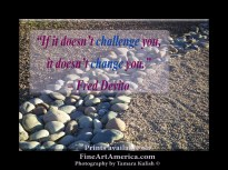 """""""If it doesn't challenge you, it doesn't change you."""" – Fred Devito. One of the quotes which is included in the book """"On Becoming a Lemonade Maker"""" by Tamara Kulish. Life can bring us down many rocky roads, which teach us our hard-won lessons. Our challenges are there to build us, not to tear us down!"""