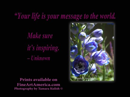 """""""Your life is your message to the world. Make sure it's inspiring. – Unknown. One of the quotes which is included in the book """"On Becoming a Lemonade Maker"""" by Tamara Kulish."""