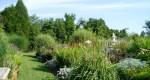 The Palette of Guroian's Garden