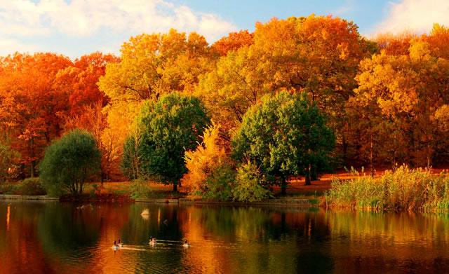 Fall_Foliage_Roadtrips