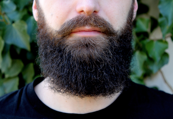 vegan_beard_2