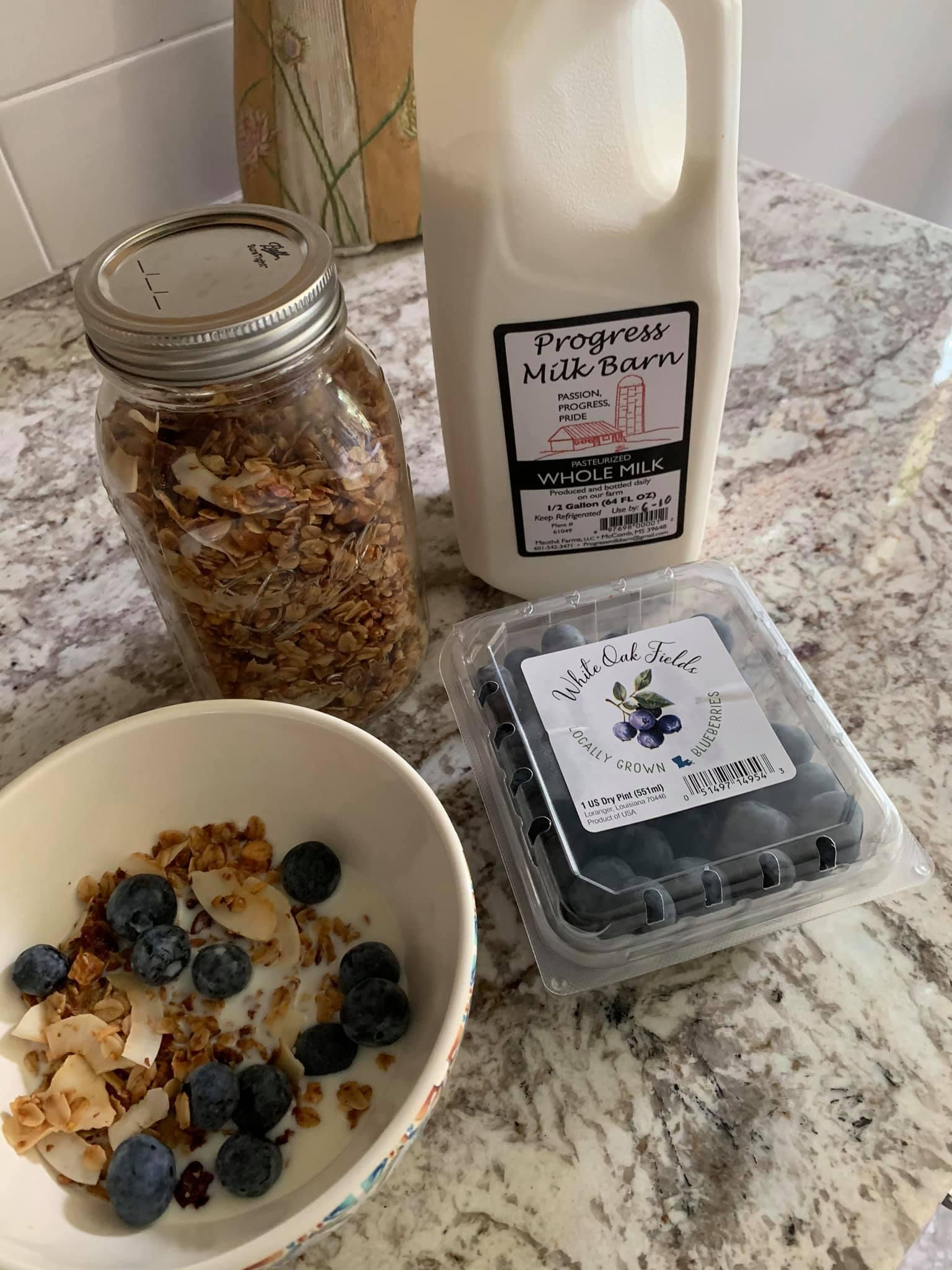Homemade granola with blueberries and milk