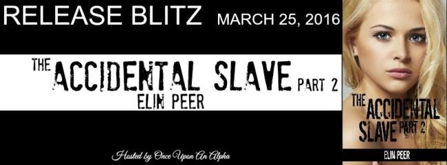 Accidental Slave 2 RB Banner