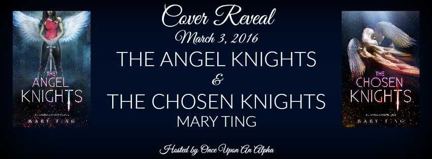 The Angel Knights & Chosen Knights RB Banner