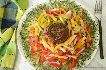 Cheerful Alfalfa (lucerne) Sprout Salad with Mango and happy Veggies
