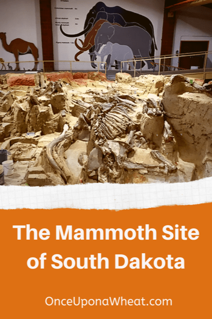 The Mammoth Site in SD Pin