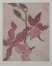 Two color etching, 2015.