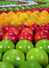 Conceptos generales y consejos generales de alimentación y nutrición