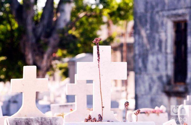 Colón Cemetery. Photo: Luis Gabriel.
