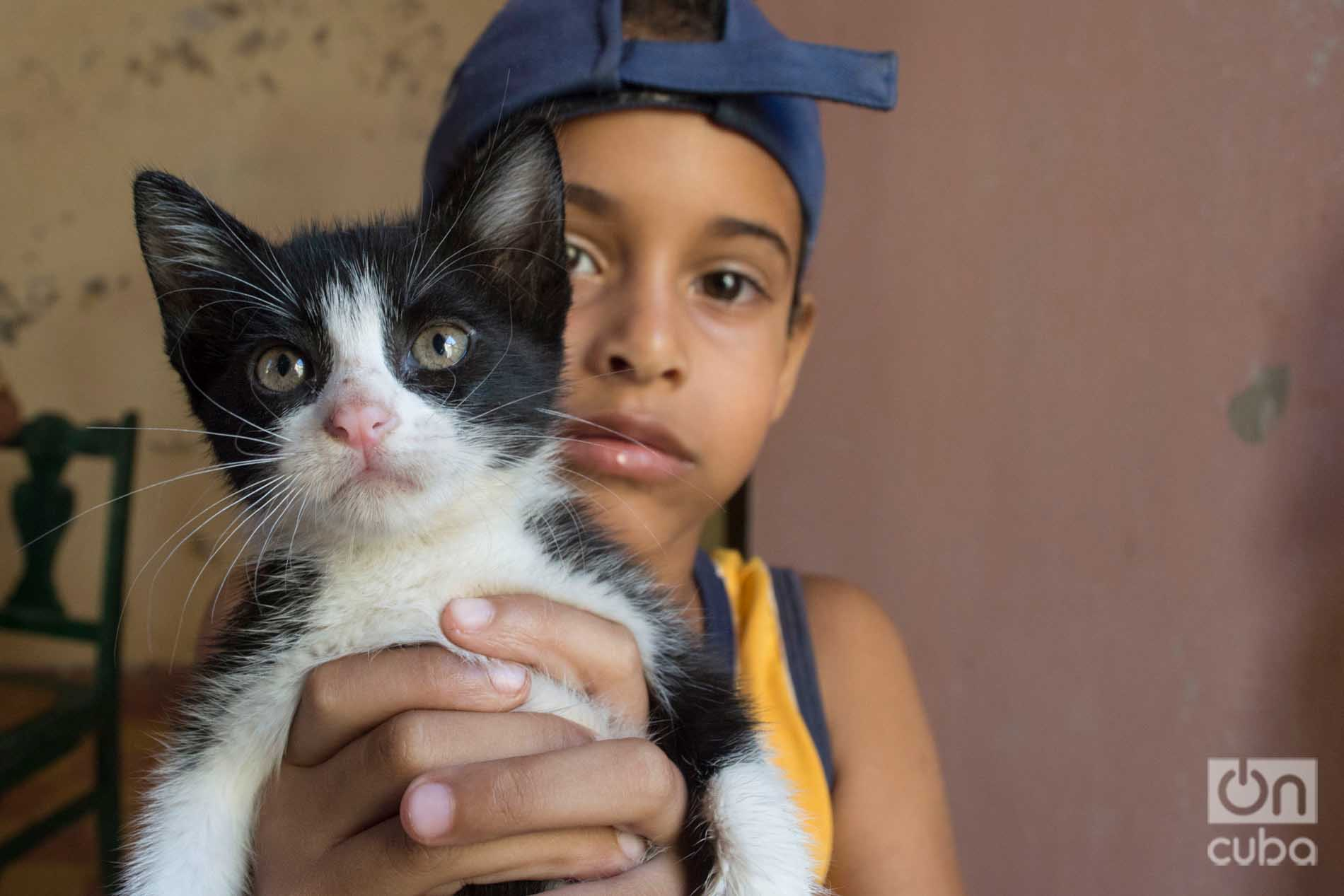 Child in Lis Núñez' cat shelter in Guanabacoa. Photo: Otmaro Rodríguez.