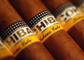 Cohiba cigars, from Cuba. Photo: Óscar Medina / Clímax / elestimulo.com