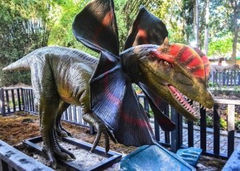 Animated dinosaur replica, installed in the Parque Forestal de La Habana, which reopened its doors on Sunday, November 17, 2019. Photo: Yaciel de la Peña / ACN.