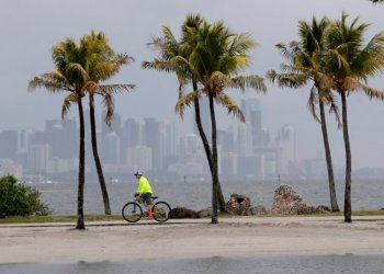 View of Miami near Biscayne Bay on May 15, 2020. Photo: AP.