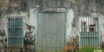 Casa vivienda, detalle de la entrada