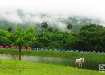 Las Terrazas. Foto: Yoe Suárez.