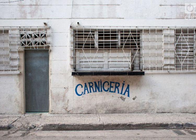 Foto: Pedro Chavedar / Archivo.