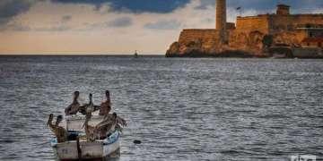 Bahía de La Habana. Foto: Otmaro Rodríguez.