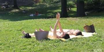 Verano en el Central Park, Nueva York. Foto: Milena Recio.