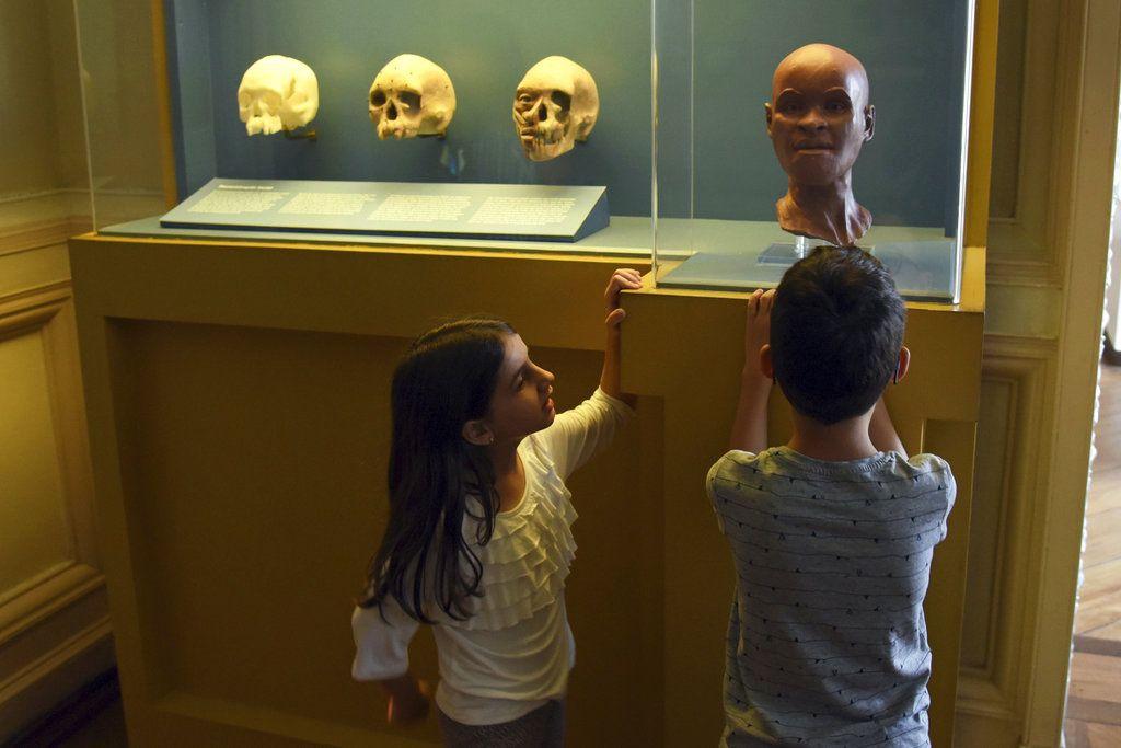 ARCHIVO - Esta fotografía de archivo sin fecha proporcionada por Riotur muestra el fósil humano más antiguo que se haya encontrado en Brasil, de nombre Luzia, en el Museo Nacional de Río de Janeiro. (Alexandre Macieira/Riotur vía AP, archivo)