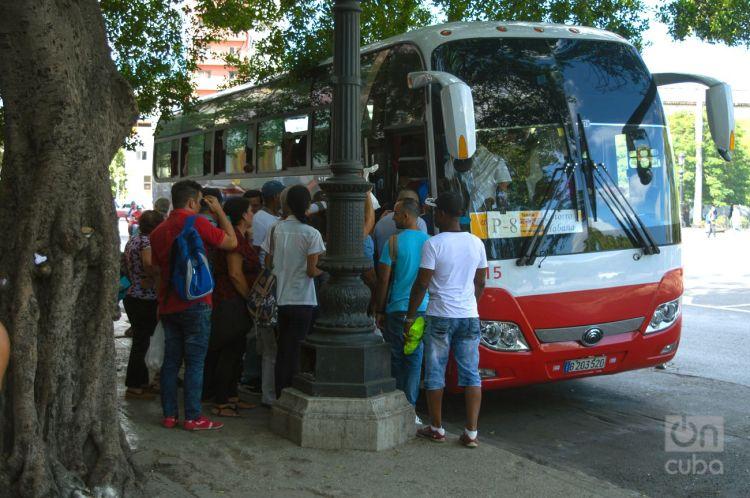 Ómnibus rutero en La Habana. Foto: Otmaro Rodríguez.