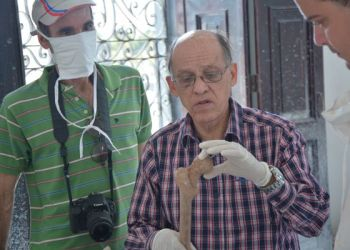 El historiador y antropólogo Ercilio Vento (c) durante la la identificación dela patriota cubana María de la Luz Noriega en el cementerio de Matanzas. Foto: ACN.