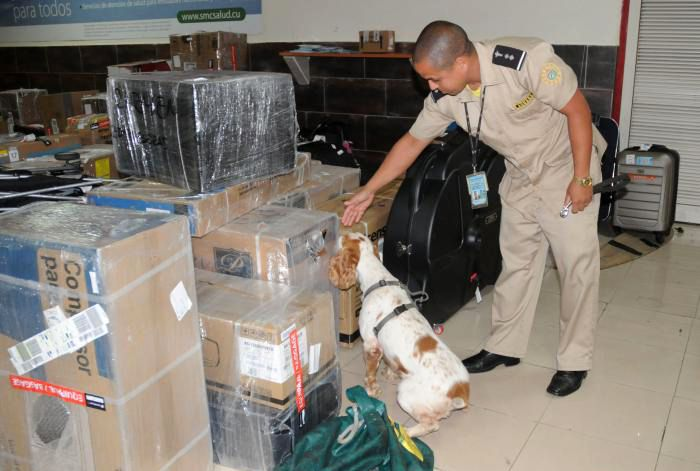 Inspección antidroga de la Aduana General de Cuba. Foto: Ismael Batista / Granma / Archivo.