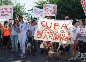 Marcha contra el maltrato animal, el 7 de abril de 2019 en La Habana. Foto: Otmaro Rodríguez.