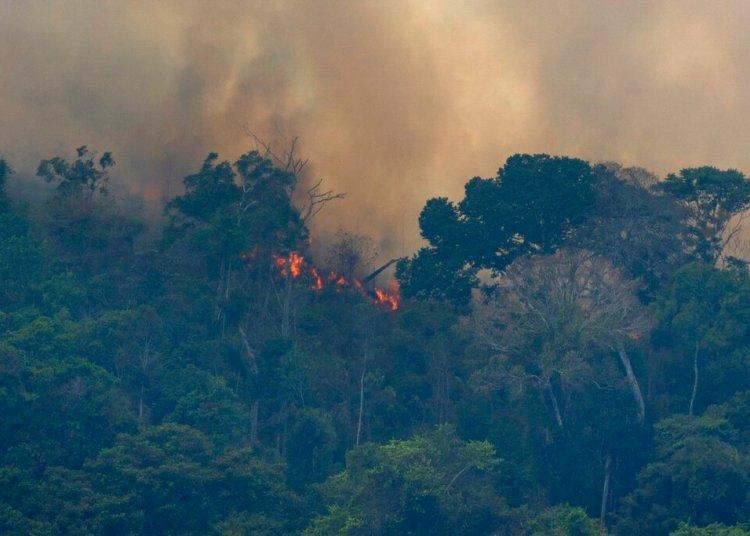 El fuego se abre paso en la Amazonía, cerca de Porto Velho, Brasil, el viernes 23 de agosto de 2019. Foto: Víctor R. Caivano / AP.