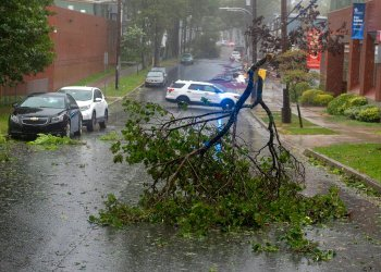Las ramas de un árbol obstruyen una calle en Halifax, Nueva Escocia, en Canadá, a medida que se acercaba el huracán Dorian, el sábado 7 de septiembre de 2019. Foto: Andrew Vaughan/The Canadian Press vía AP.