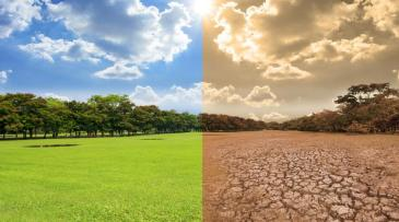 Aprobadas las medidas para luchar contra el cambio climático