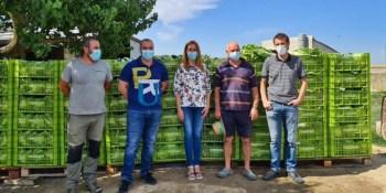 La Huerta Experimental de Fuenlabrada dona 60 toneladas de alimentos
