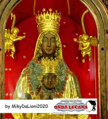Immagine tratta da repertorio di Onda Lucana®by Miky Da Lioni 2020.jpg0666