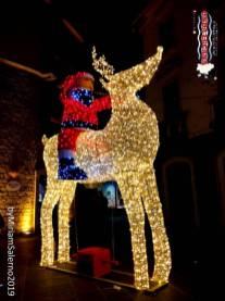 Immagine tratta da repertorio di Onda Lucana®by Miriam Salerno 2019 Potenza feste natalizie...........