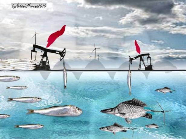 Progressivamente Petreolia in un mondo atipico 2019.jpg