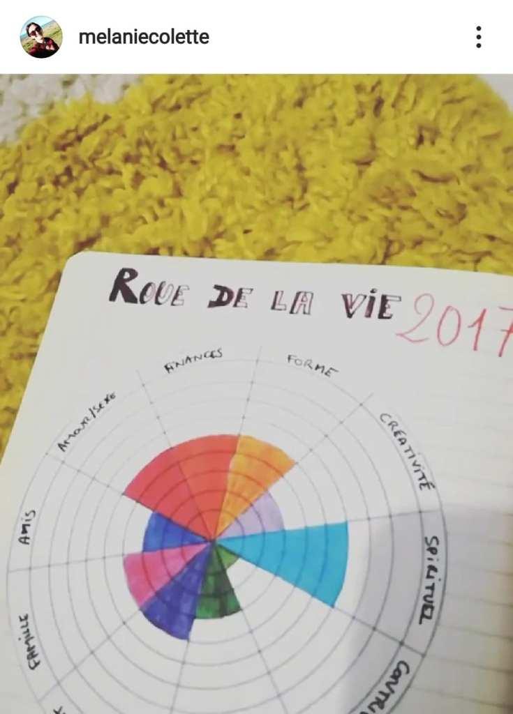 Roue de la vie complétée avec des couleurs dans les 10 domaines de la vie.