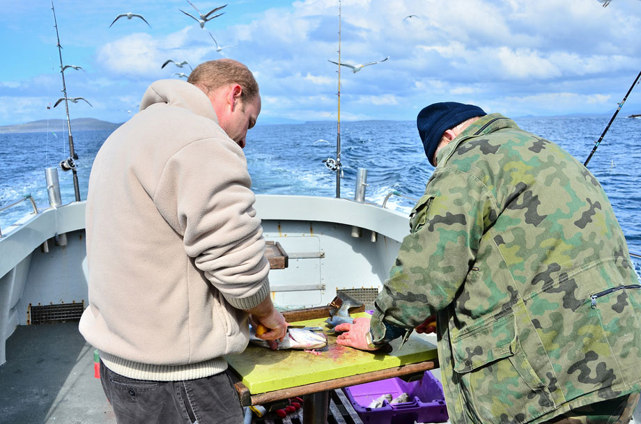 Two Men Gutting Fish On A Boat