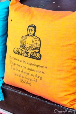 Monkey Forest Street Shop Buddha Says Pillow