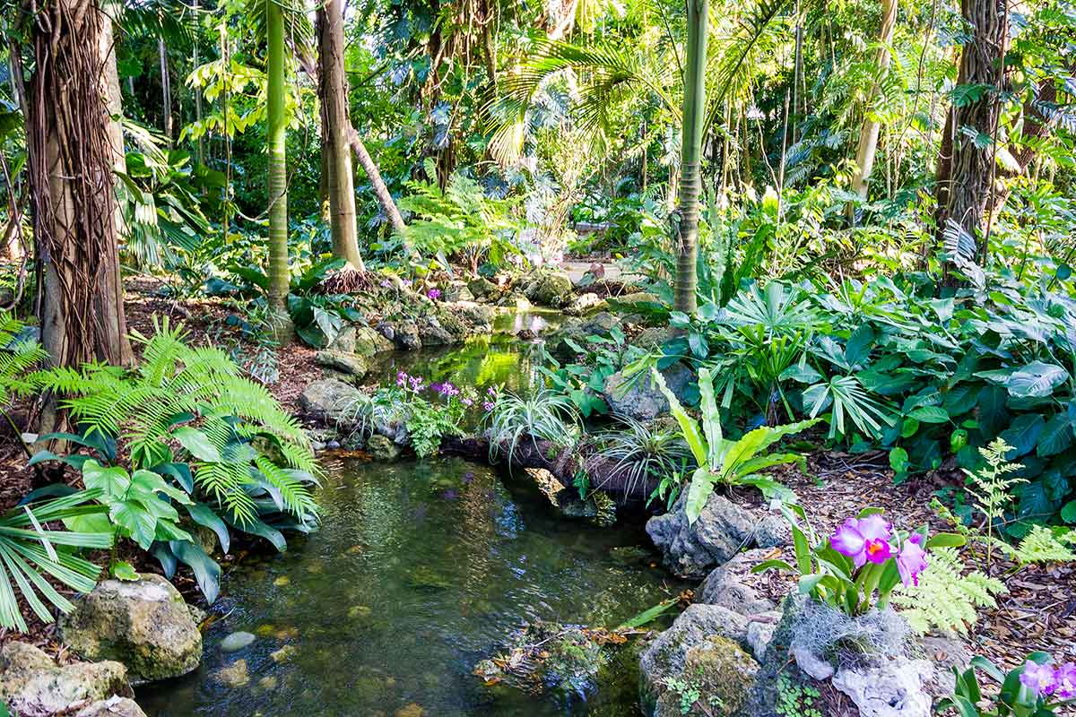 fairchild gardens miami florida attractions