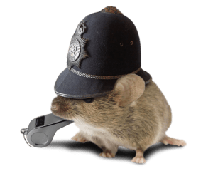 Documents Mouse