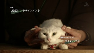 Neko.Samurai.Season2.EP01.720p.HDTV.x264.AAC-DoA.mkv_snapshot_00.50_[2016.01.12_21.43.10]